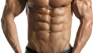 Ab muscles (six pack)